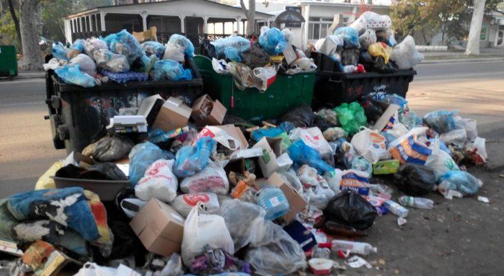 Во Фрунзенском районе опять высятся горы мусора